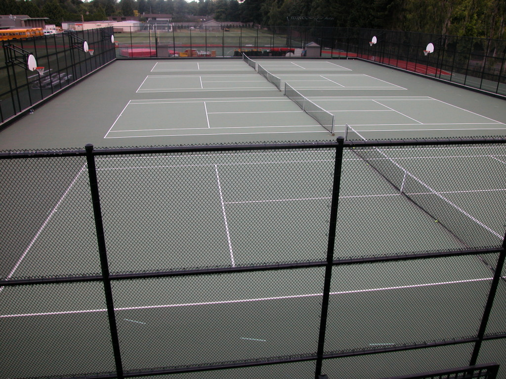Rebound Ace Cushion Courts